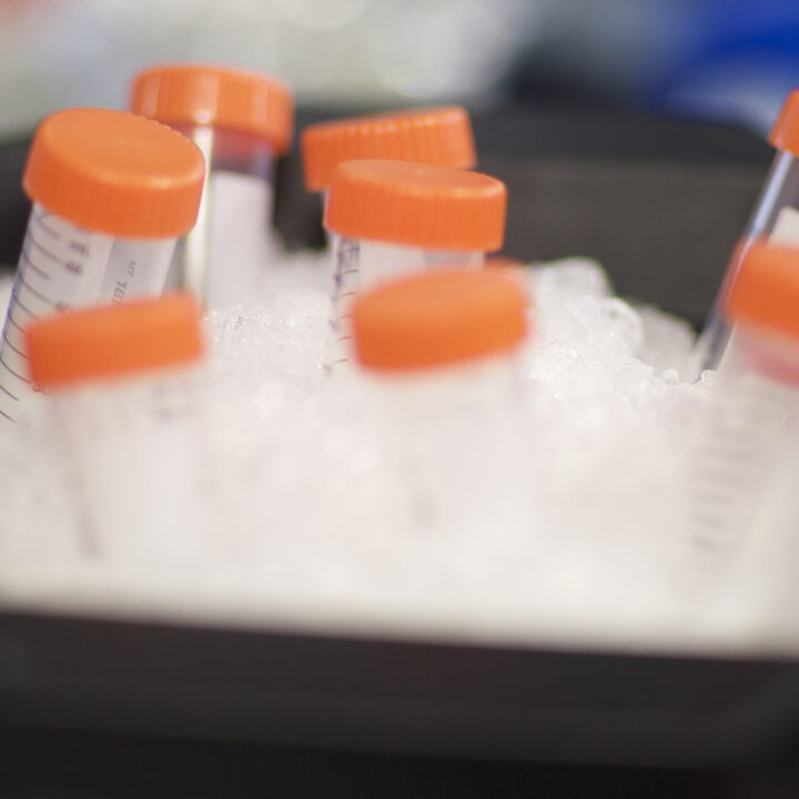 Lab sample tubes