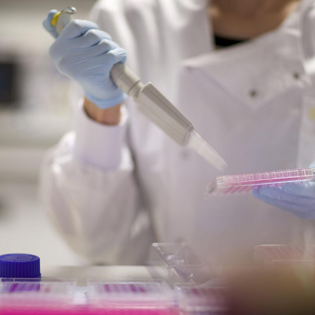 Cancer Research UK Manchester Centre   Integrative Pathology