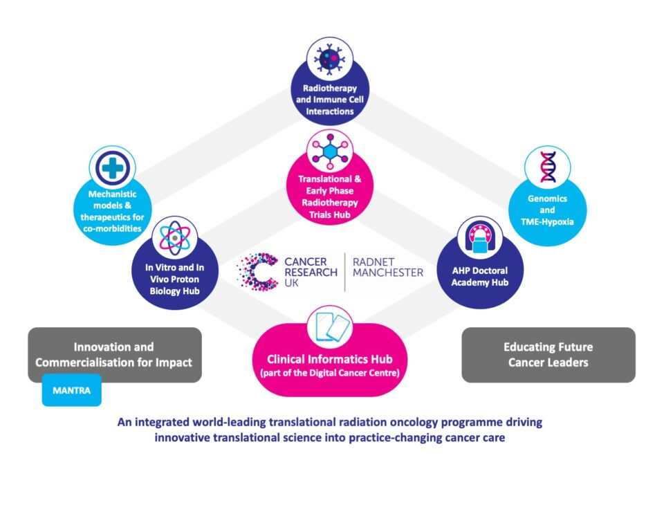Research work packages and cross-cutting research hubs of the CRUK RadNet Manchester. At the core of RadNet are four research hubs: Proton Biology, clinical informatics, translational and early phase trials, AHP Doctoral Academy. Supporting this are three work packages: Co-morbidity research, radiotherapy and immuno-oncology cell interactions and genetics and the tumour microenvironment and hypoxia.